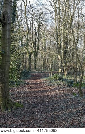 Weston-super-mare, Uk - March 5, 2021: A Footpath In Weston Woods