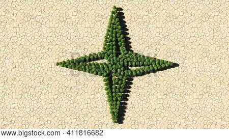 Concept or conceptual group of green forest tree on dry ground background, sign of navigation compass. A 3d illustration metaphor for travel, adventure, exploration, journey, advancement and progress
