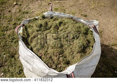 Sacks Full Of Cut Grass. Gardening In Public Spaces