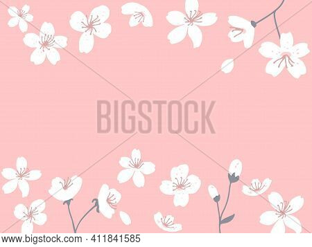 Spring Blossom Horizontal Banner. Sakura Flowers Card Vector Illustration. Pink Background With Flor