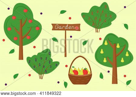 Set Of Garden Trees And Shrubs. Fruit Trees In The Garden: Apples And Pears. Harvest Season (summer,