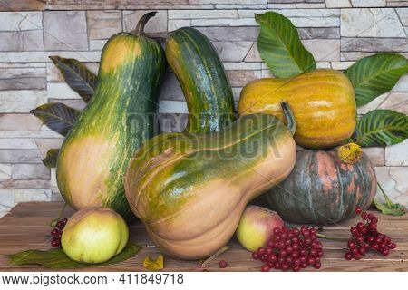 On The Table Among The Autumn Leaves Are Ripe Pumpkins Of Various Varieties, Apples, Viburnum Berrie