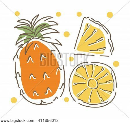 Pineapple And Pineapple Slices. Abstract. Hand-drawn Vector Illustration.