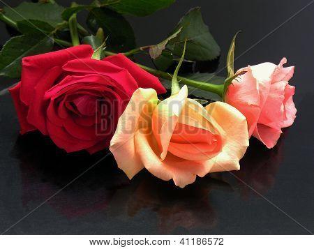 three roses on black table