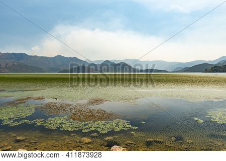 Skadar Lake Landscape With Water, Green Lilies And Mountains, Montenegro. Great Tourist Attraction