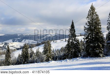 winter scene in Carpathian mountains, Ukraine
