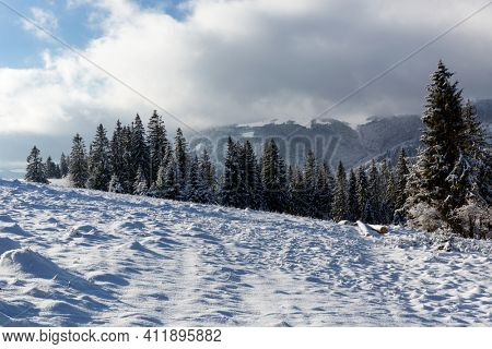 Winter landscape with snow-covered meadow in Carpathian mountains, Ukraine