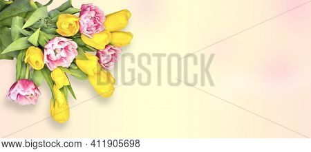 Floral Spring Greeting Card With Yellow And Pink-white Tulip Flowers On Gradient Pastel Background W