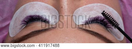 Eyelash Extension Treatment with purple colorful lashes and taking care and arange wiht brush. Woman Eyes with Long Eyelashes.