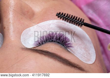 Treatment of Eyelash Extension with colorful purple lashes and taking care and arange wiht brush. Woman Eyes with Long Eyelashes.