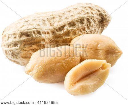 Peeled peanuts and peanut pod isolated on white background. Close-up.