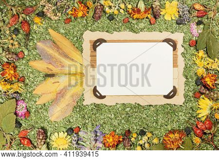 Background Of Fragments Broken Flowers And Leaves. Scrapbooking Element Consists Mosaic Of Flowers A