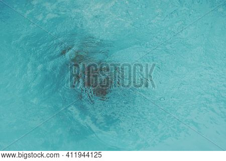 Abstract Photo Lifestyle, Nature Background. Unrecognizable Person Body Deep Under Water, Look At Su
