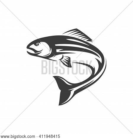 Atlantic Salmon Ray-finned Fish Isolated Monochrome Icon. Vector Salmon Freshwater Fish, Seafood, Ma