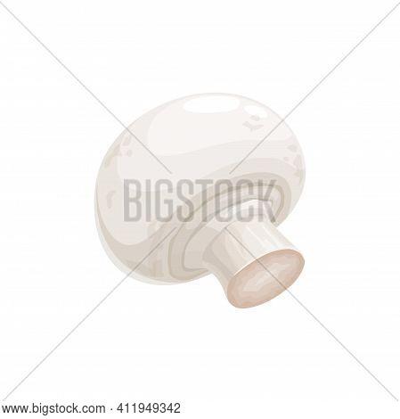 Champignon Small Edible Mushroom With White Cap Isolated 3d Realistic Icon. Vector Common White Butt
