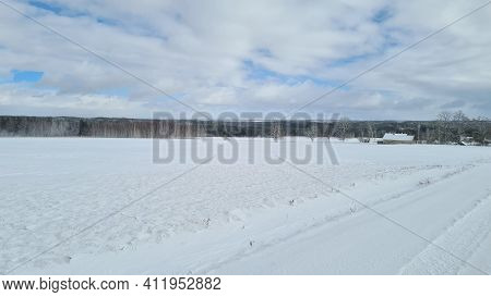 Snowy Planted Field With Green Grass Shoots On Farm Buildings On Horizon Background At Winter Day -