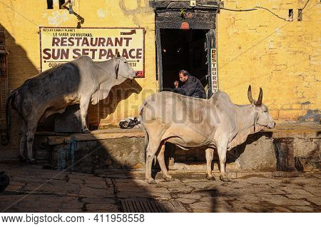 Jaisalmer, India - Dec 31, 2019: Picture Of The Life, Market, Streets And Houses Of Jaisalmer City,