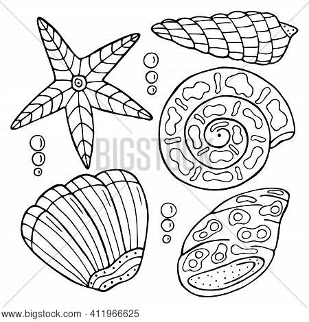 Hand Drawn Sea Shell Isolated On A White Background. Coloring Book For Children And Adults. Simple O