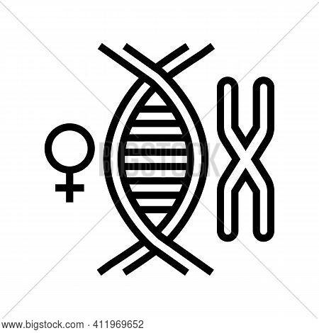 Female Chromosome Genetic Line Icon Vector. Female Chromosome Genetic Sign. Isolated Contour Symbol
