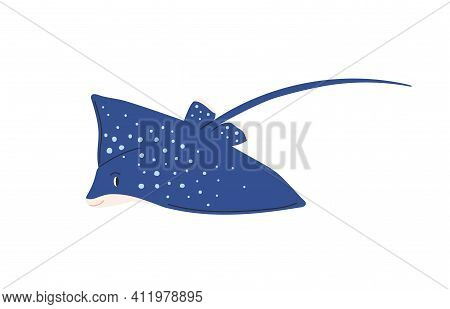 Cute Spotty Stingray With Tail. Marine Ray Fish Isolated On White Background. Childish Colored Flat
