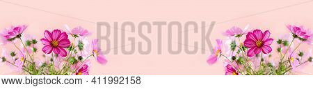 Fresh Summer Bouquet Of Pink Cosmos Flowers On Pink Background. Floral Home Decor.