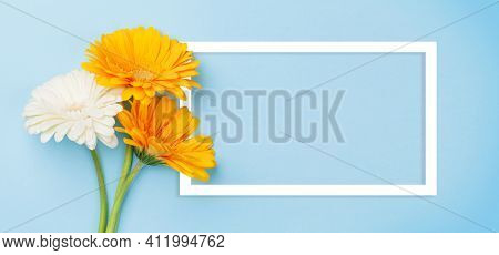 Colorful gerbera flowers over blue background. Top view flat lay with frame for your text or greetings