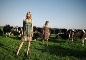 pretty girls in a field with cows poster