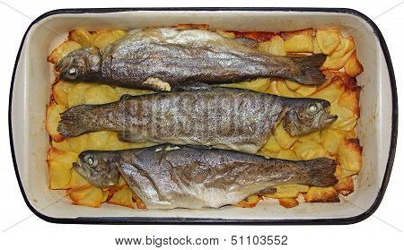 Baked trouts and potatoes in a baking tray poster