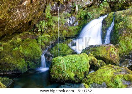 Mossy Little Waterfall