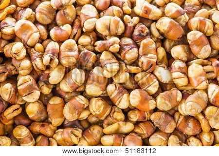 Salted Crispy Broad Bean