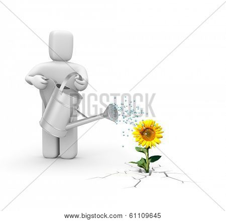 Worker with watering can and sunflower