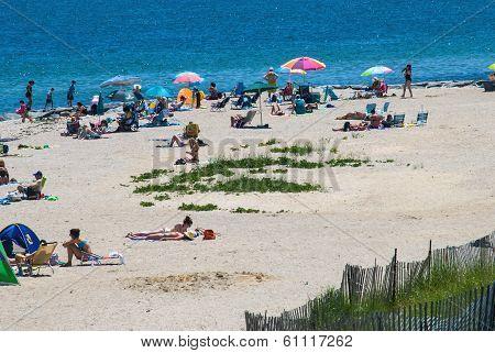 Oak Bluffs Beach Day