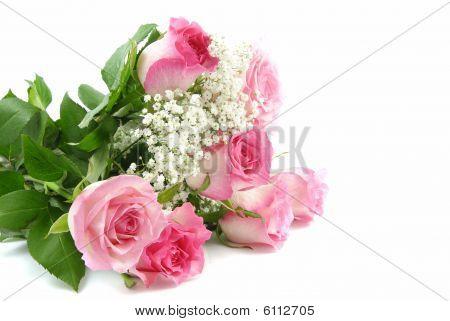 Rode rozen en een Lace