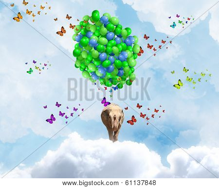 Elephant flying in sky on bunch of colorful balloons poster