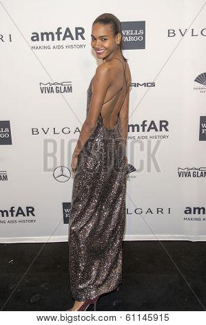 NEW YORK-FEB 5: Model Arlenis Sosa attends the 2014 amfAR New York Gala at Cipriani Wall Street on February 5, 2014 in New York City.