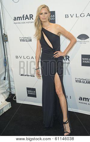 NEW YORK-FEB 5: Model Karolina Kurkova attends the 2014 amfAR New York Gala at Cipriani Wall Street on February 5, 2014 in New York City.