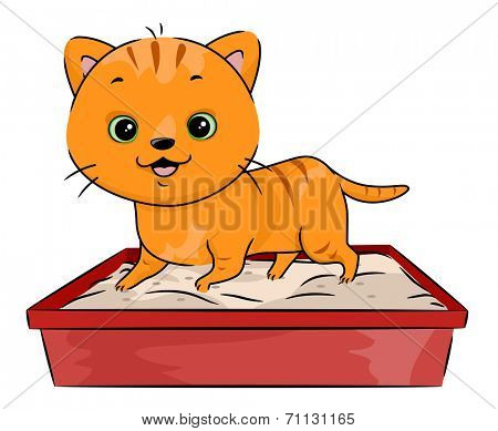 Illustration Featuring a Cat Walking All Over its Litter Box