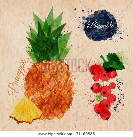Fruit watercolor pineapple, bramble, red currant kraft