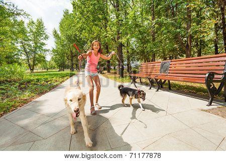 Teenage girl with running away dogs