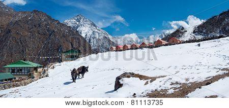Village in Gokyo valley in  Himalayas,Sagarmatha National Park, Nepal poster