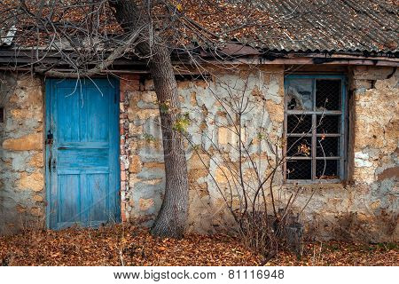 Window and door of the old house under the tree