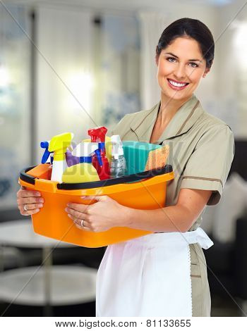 Young smiling cleaner woman in modern house.