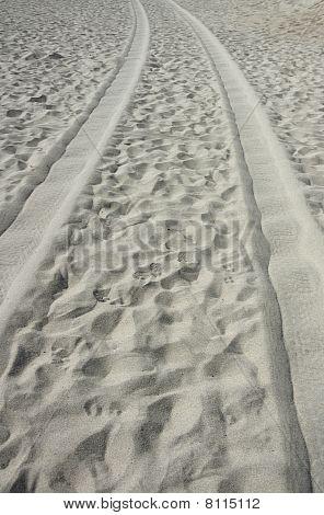 Tire Tracks On The Beach