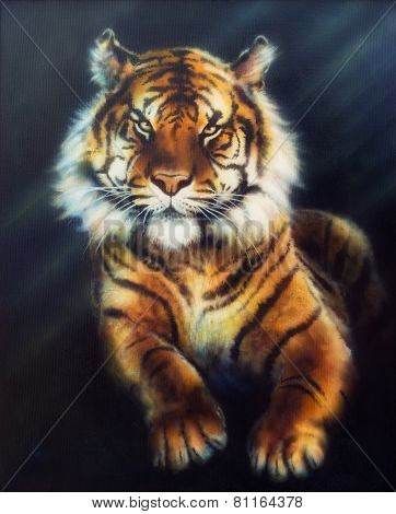 A beautiful oil painting on canvas of a mighty tiger looking up courageously from black background poster