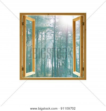 open window,  wooden frame with forest view, morning, sunlight