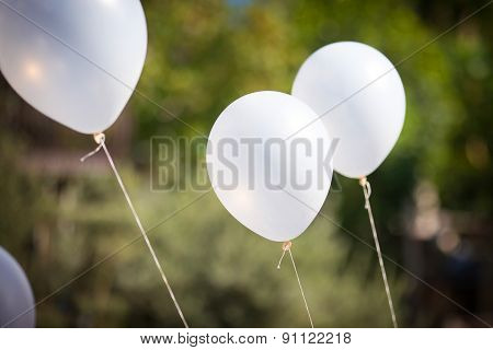 White Balloons On Green Background