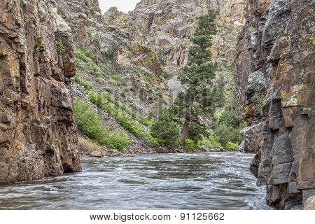 Cache la Poudre River at Little Narrows, springtime scenery with snow melt run off