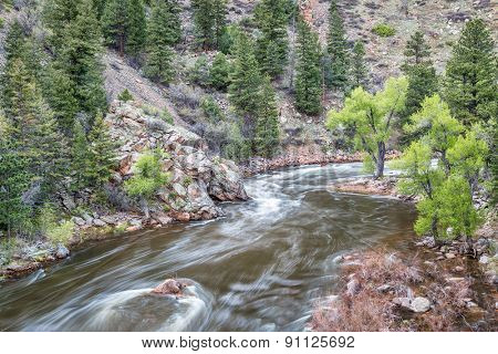 Cache la Poudre River at Big Narrows west of  Fort Collins in northern Colorado - springimie scenery with a snow melt run off