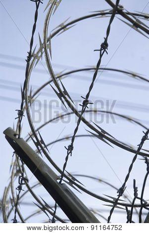 Barbed Wire And Razor Wire