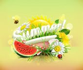 Summer, time for a picnic, watermelon, nature, outdoor recreation, a tablecloth and sun behind, grass, flowers of chamomile and dandelion, vector illustration showing the summertime poster